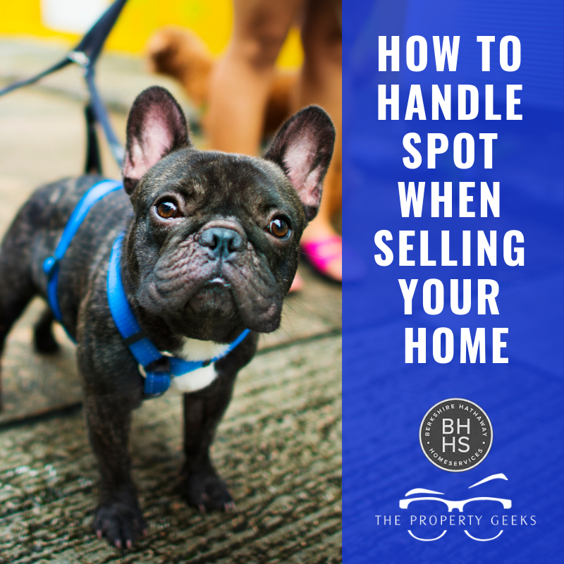 Selling your home with pets